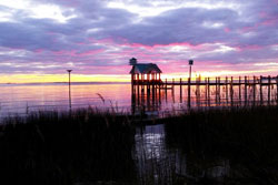 wheelchair accessible and pet friendly by owner vacation rental in the outer banks